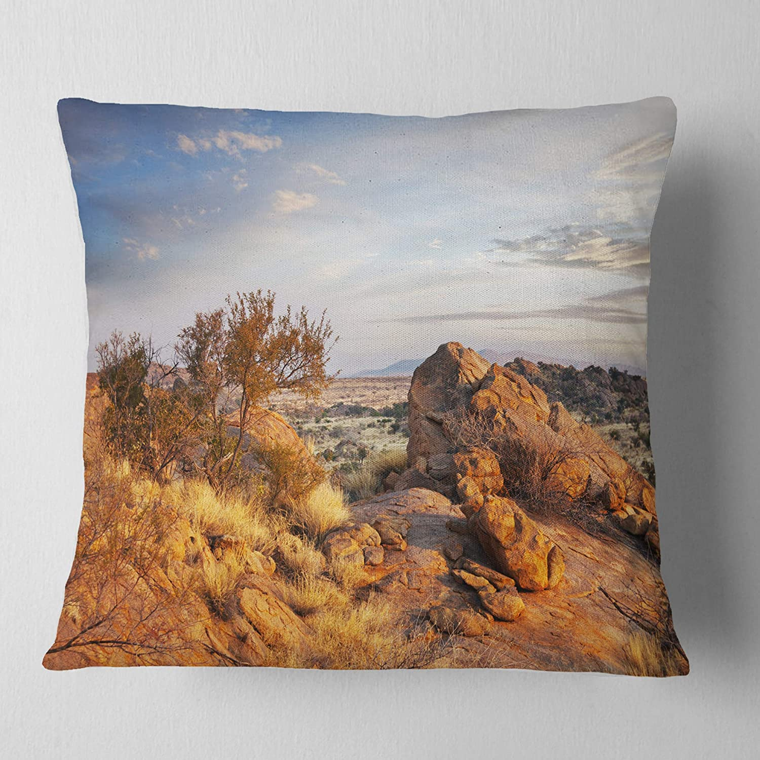 x 16 in Designart CU12582-16-16 Beautiful African Rocky Landscape Printed Cushion Cover for Living Room Insert Side Sofa Throw Pillow 16 in in