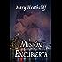 Misión Encubierta (Amor y Mentiras nº 1)