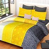 Home Elite Dynamic 120 TC Cotton Double Bedsheet with 2 Pillow Covers - Paisley, Multicolour