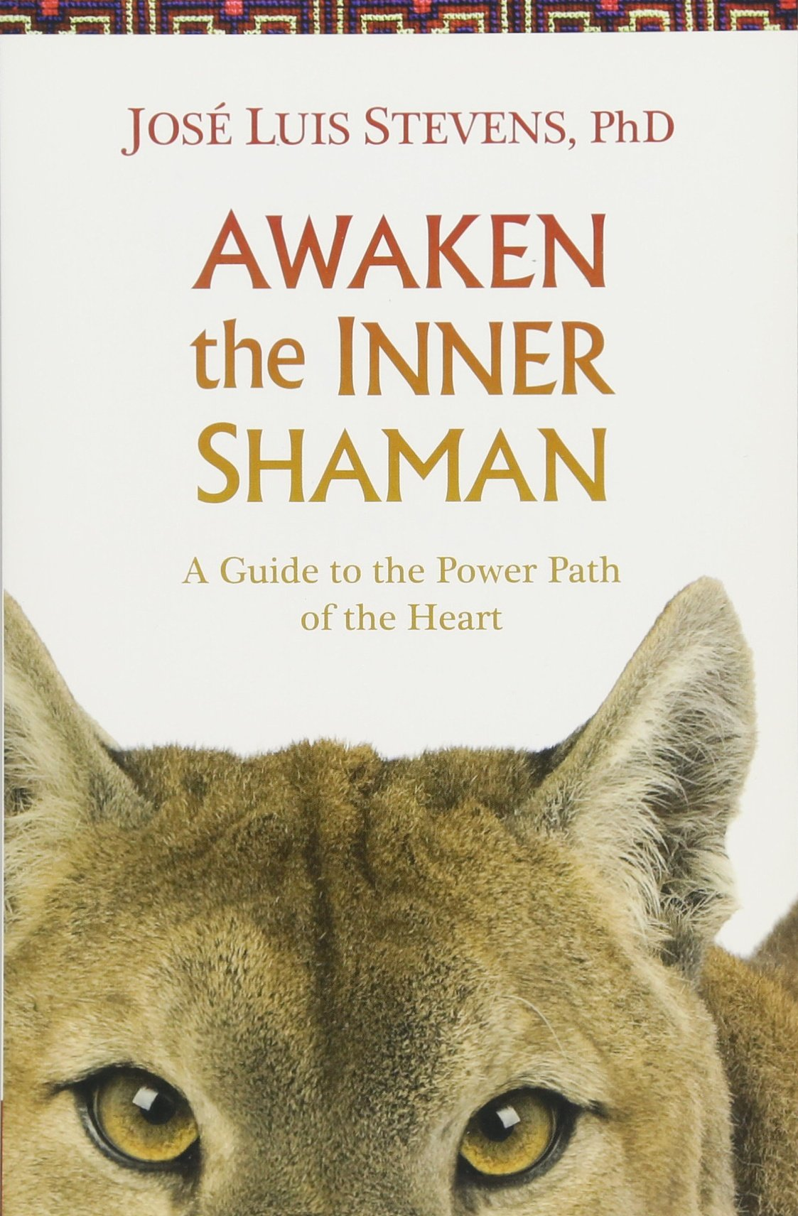 Awaken the Inner Shaman: A Guide to the Power Path of the Heart PDF