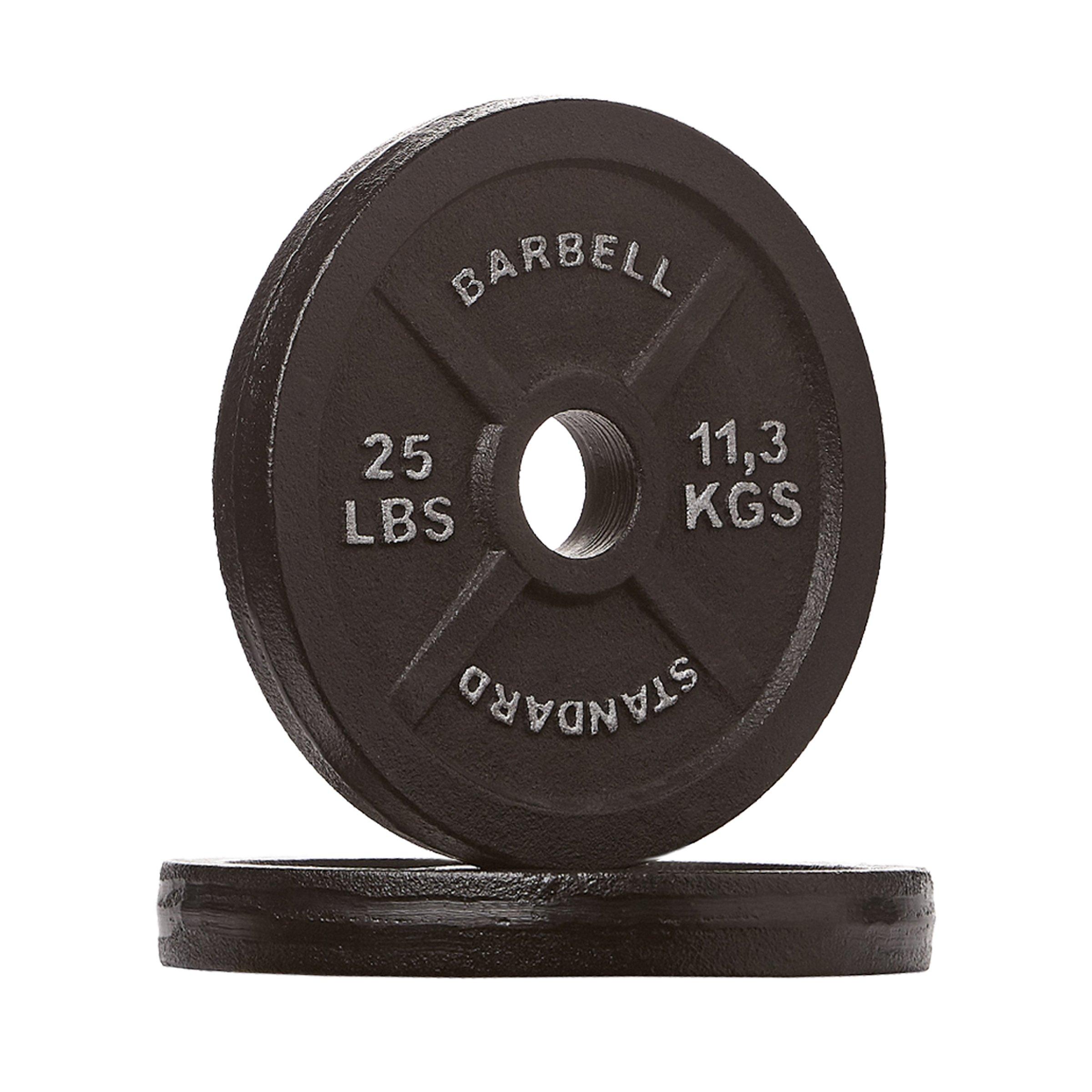 Rep Iron Plates, 25 lb Pair