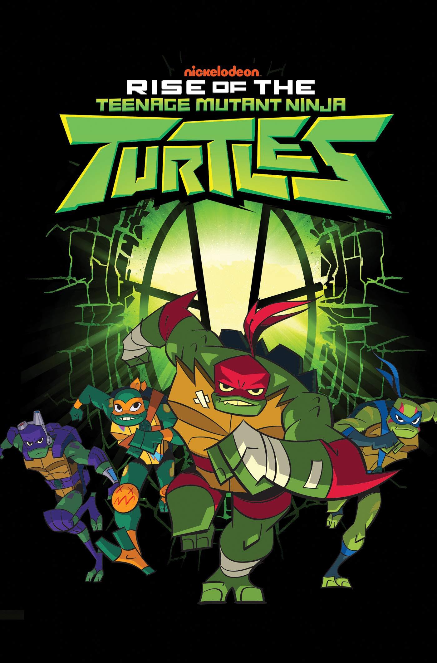 Amazon.com: Rise of the Teenage Mutant Ninja Turtles (Rise ...