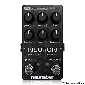 Neunaber Audio Effects Neuron