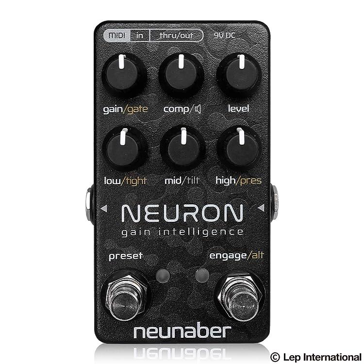 Neunaber Audio Effects Neuron
