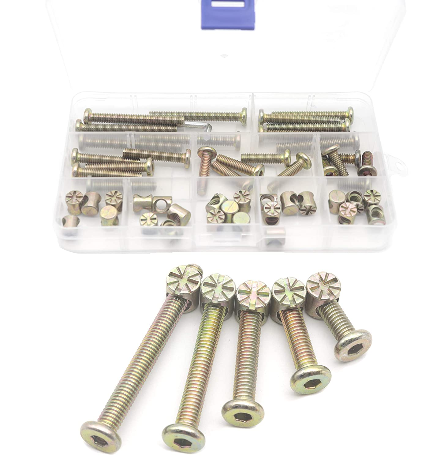cSeao 50pcs Zinc Plated M6 Socket Cap Bolt Barrel Nuts Assortment Kit for Cot Chairs Chest Furniture Bed M6x15mm//25mm//35mm//45mm//55mm Crib Bolts Replacement Kit