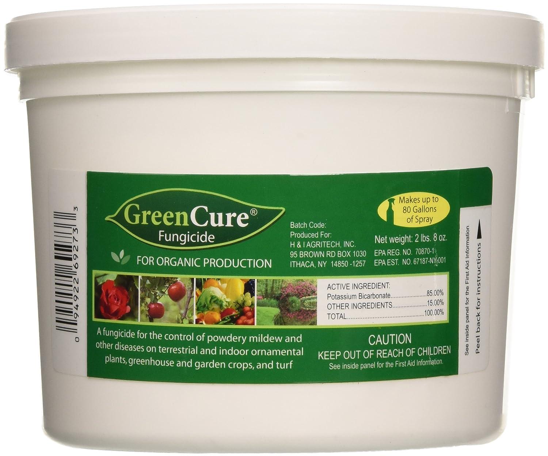 Amazon.com : GreenCure Fungicide, 40oz : Fertilizers : Patio, Lawn ...