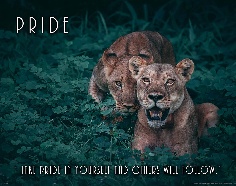 Apple Creek Lions Wildlife Motivational Poster Art Print 11x14 Pride Zoo Cat School Classroom Wall Decor Pictures