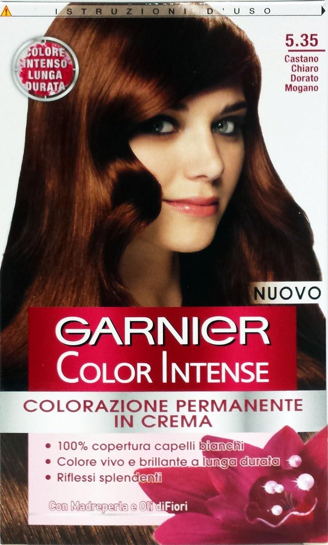 6 x Color Intense Champú Tinte 5.3 Castaño Claro Dorado ...