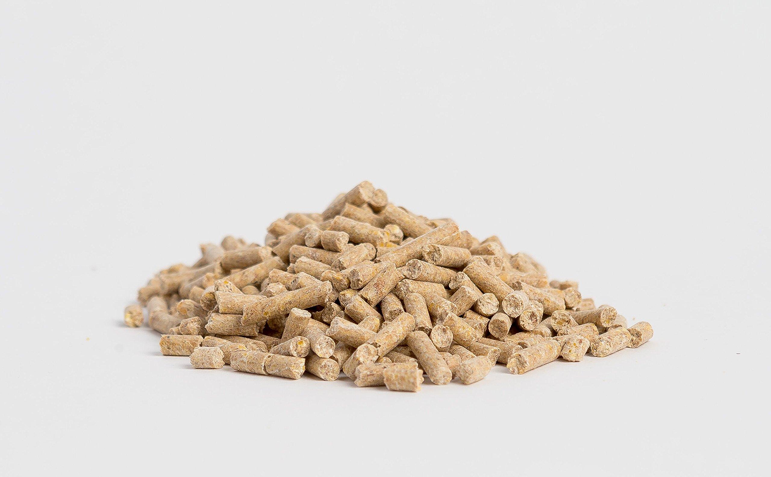 Horse Guard Mega Dose Equine Vitamin Mineral Hoof & Probiotic Supplement, 40 lb by Horse Guard (Image #4)