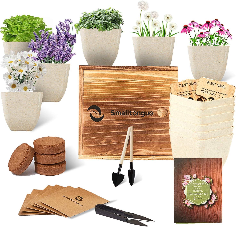 Smalltongue Indoor Herb Garden Kit-Herbal Tea Growing Kits, 6 Types of Herb Herbal Tea,Herbal Tea Growing Starter Kit for Beginner, Adult, Kitchen, Balcony, Window Sill