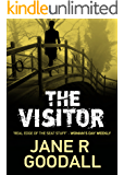The Visitor (Briony Williams Thriller Book 2)