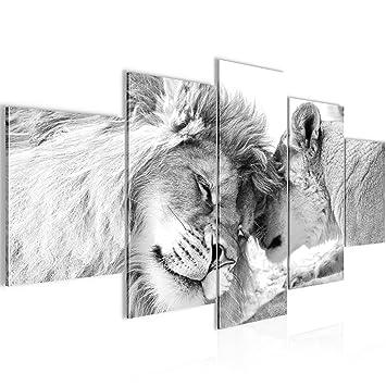 prestigeart Bilder Löwen Liebe Wandbild 200 x 100 cm Vlies ...