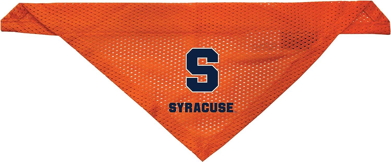 Medium Syracuse Orange Dog Bandana