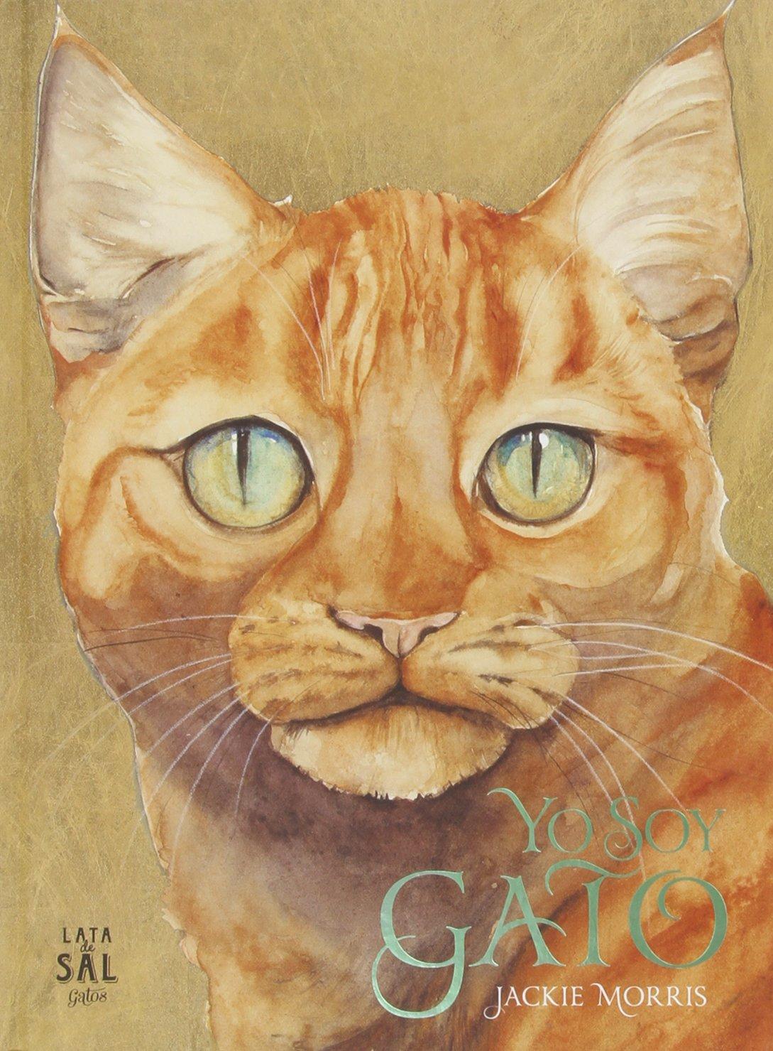 Yo soy Gato (Spanish Edition) (Spanish) Hardcover – February 27, 2015