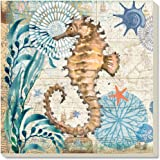 Counter Art Monterey Bay-Seahorse Absorbent Coasters, Set of 4