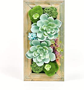 "Room & Bloom Artificial Succulent Wall Art Flower Decor Kitchen Decorations Lounge Room Dining Room Picture 3D Living Room Floral Framed Fake Faux Hanging Succulents House Decor Green Hanger 20"" x 10"""
