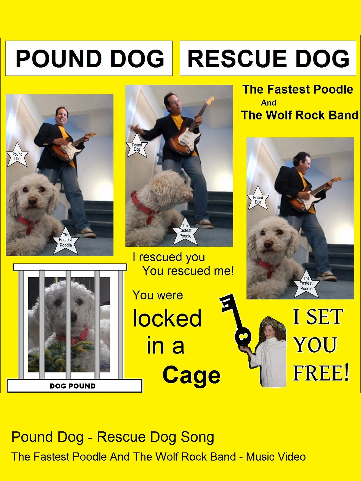 Amazon Pound Dog Rescue Dog Song The Fastest Poodle And