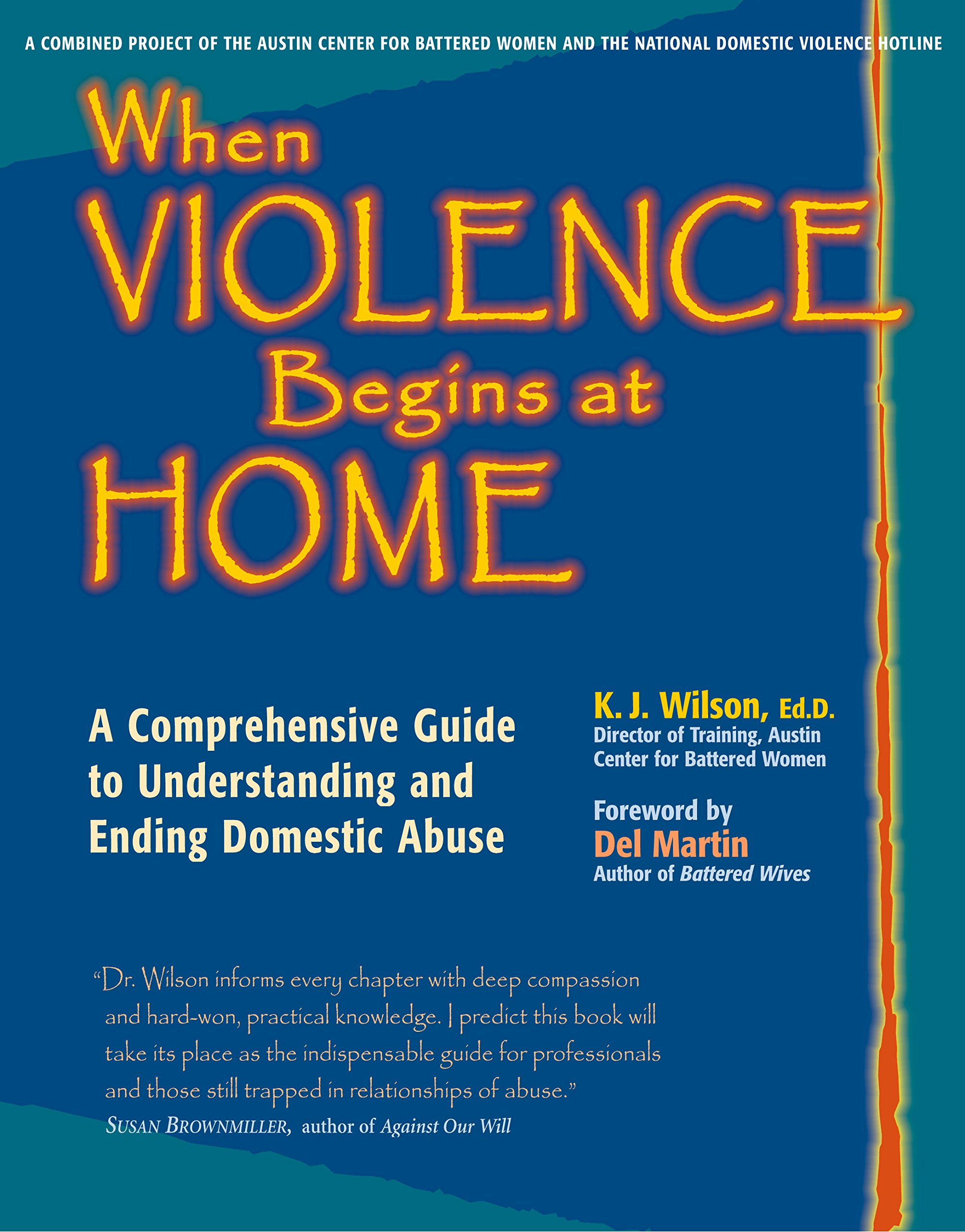 Download When Violence Begins at Home: A Comprehensive Guide to Understanding and Ending Domestic Abuse ebook