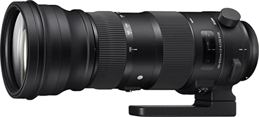 Review Sigma 150-600mm 5-6.3 Sports