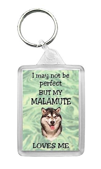 Amazon.com: Alaskan Malamute llavero