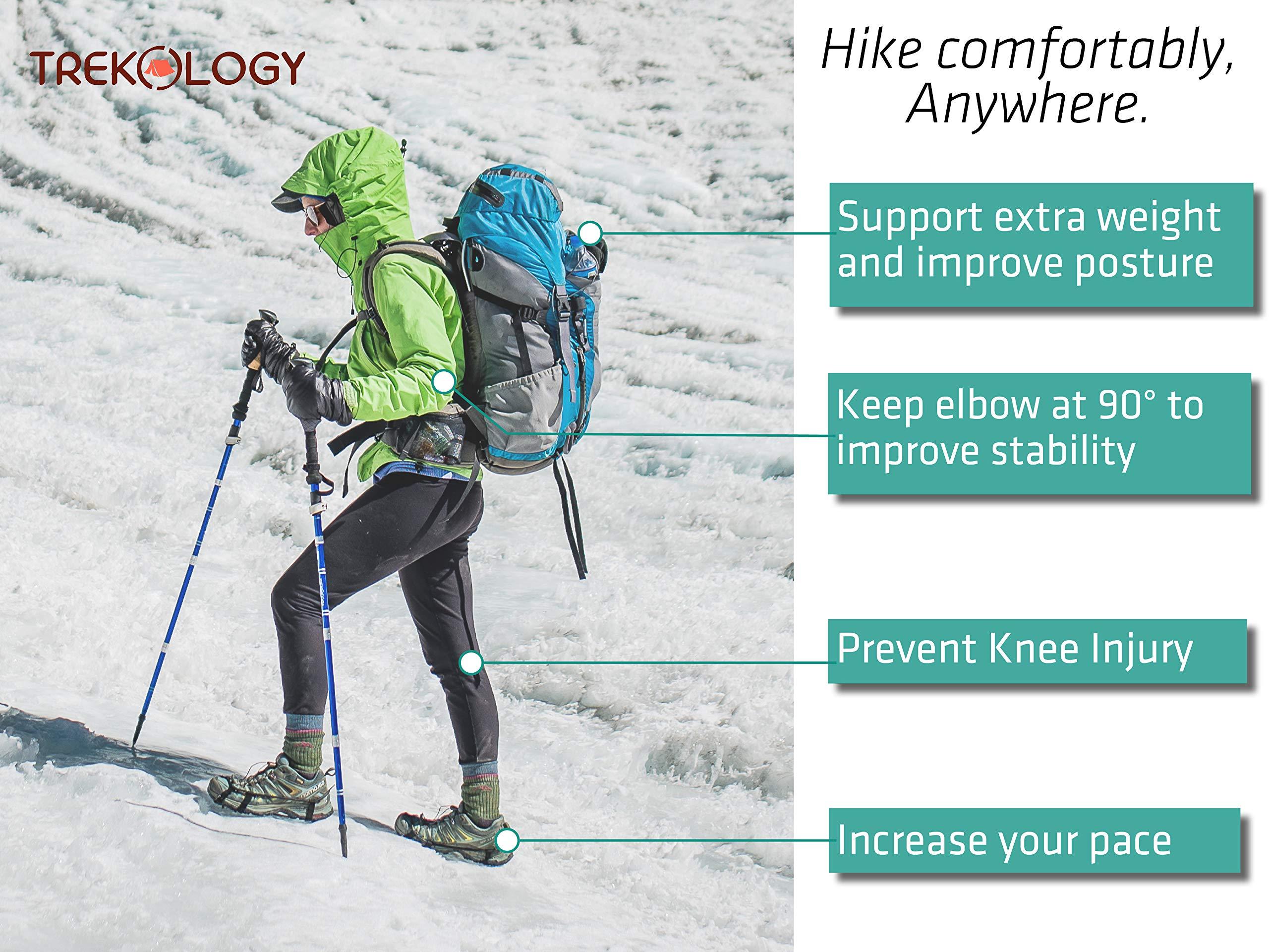 Lightweight Adjustable Collapsible TREKOLOGY Walking Trekking Poles 2pc//set