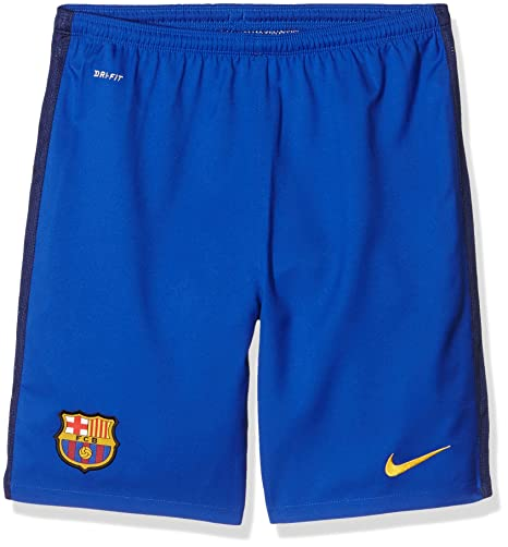 73848a50fda Nike 2015 16 Boys FC Barcelona Goalkeeper Stadium Soccer Shorts  Bright Blue   (