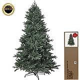 RS Trade® 210 cm exklusiver, hochwertiger künstlicher Spritzguss PE Premium Weihnachtsbaum, 100% Spritzgussnadeln ca. 4850 Spitzen, mit Metallständer, Minutenschneller Aufbau mit Klappsystem, schwer entflammbar, HXT 1418