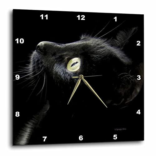Rhythm Clocks Caprice Musical Motion Clock