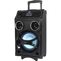 Roadstar DJ-880BT Mobile PA-Anlage Akku, Bluetooth, MP3, USB, 1 Mikrofon, 800 Watt, AUX, Trolley mit Griff und Rollen, Lichteffekte, schwarz