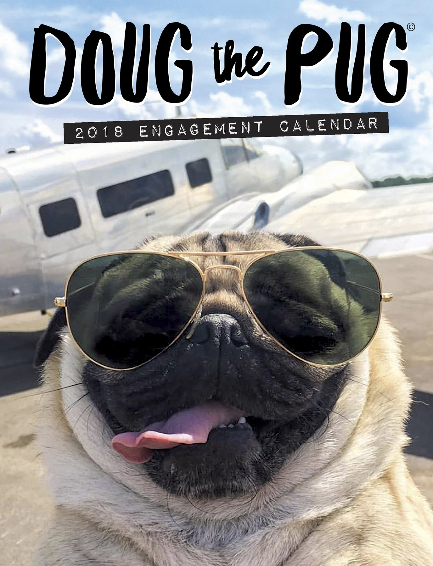 doug-the-pug-2018-engagement-calendar
