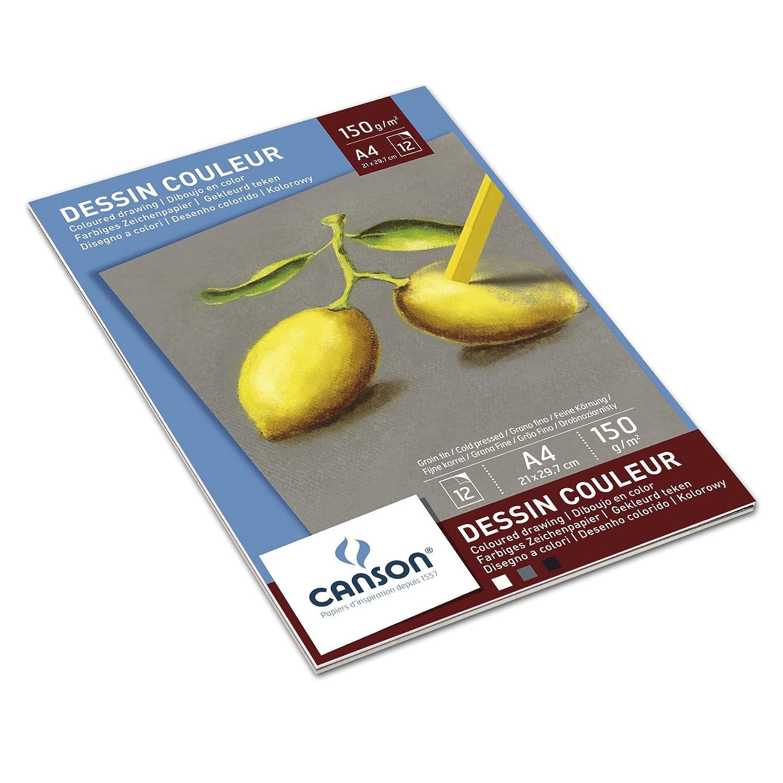 Canson Bloc Pastel 400041762 Papier couleur Assorti