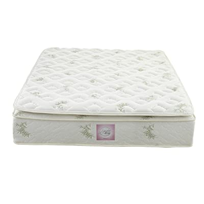 Signature Sleep 13 inch Mattress