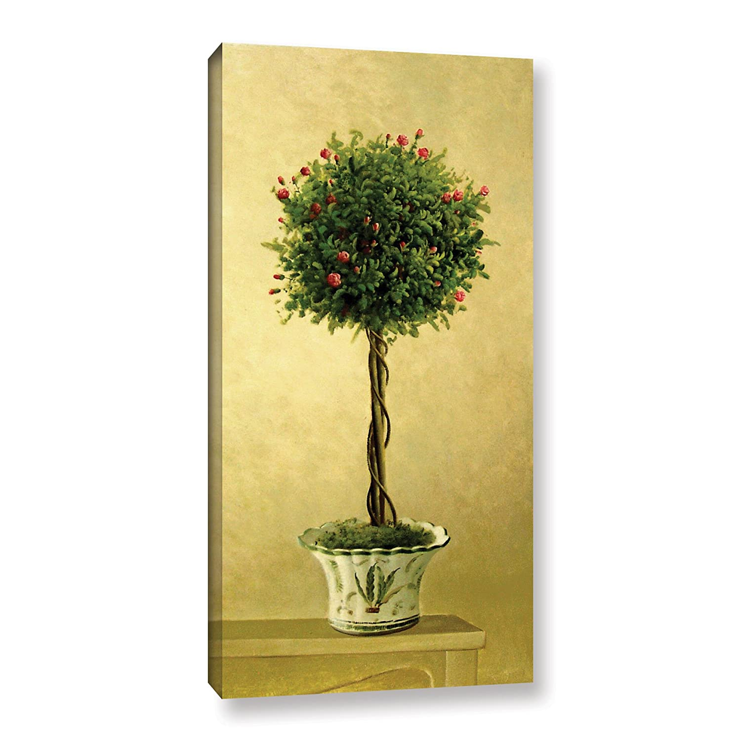 Amazon.com: Welby \'\'Rose Topiary I\'\' Gallery Wrapped Floater-framed ...