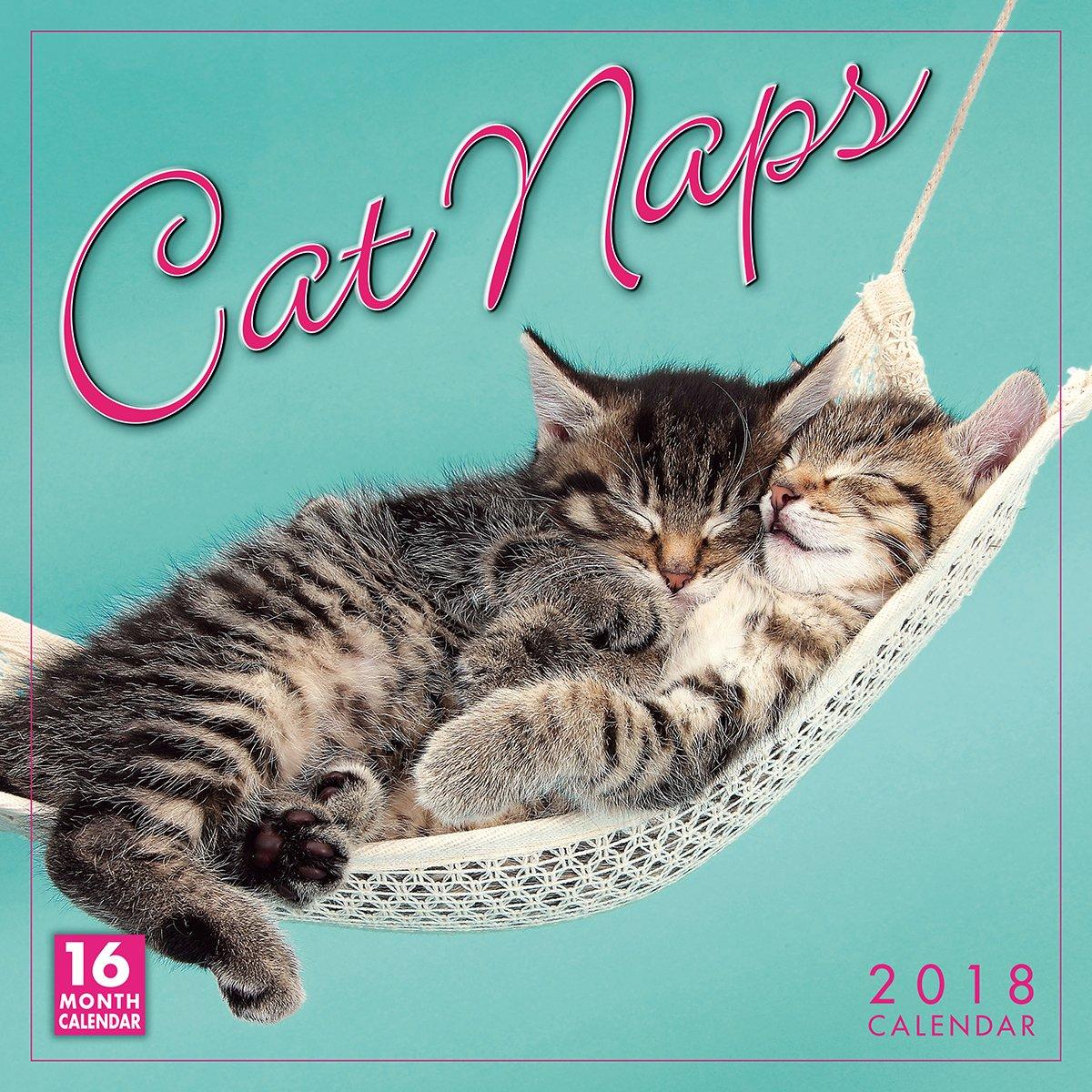 Cat Naps 2018 Wall Calendar (CA0114)