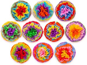 Cinco De Mayo Decorations Fiesta Tissue Pom Paper Flowers - Mexican Party Supplies 16inch (Set of 10)