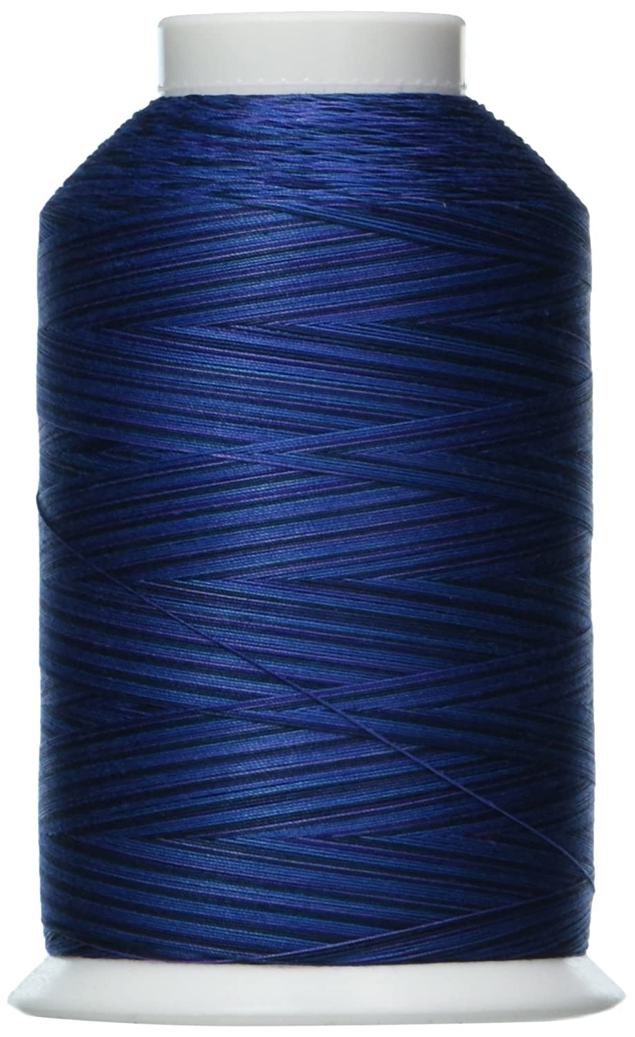 Nordic Fjord 3000 yd YLI 24430V85 3-Ply Machine Cotton Quilting Variegated Thread