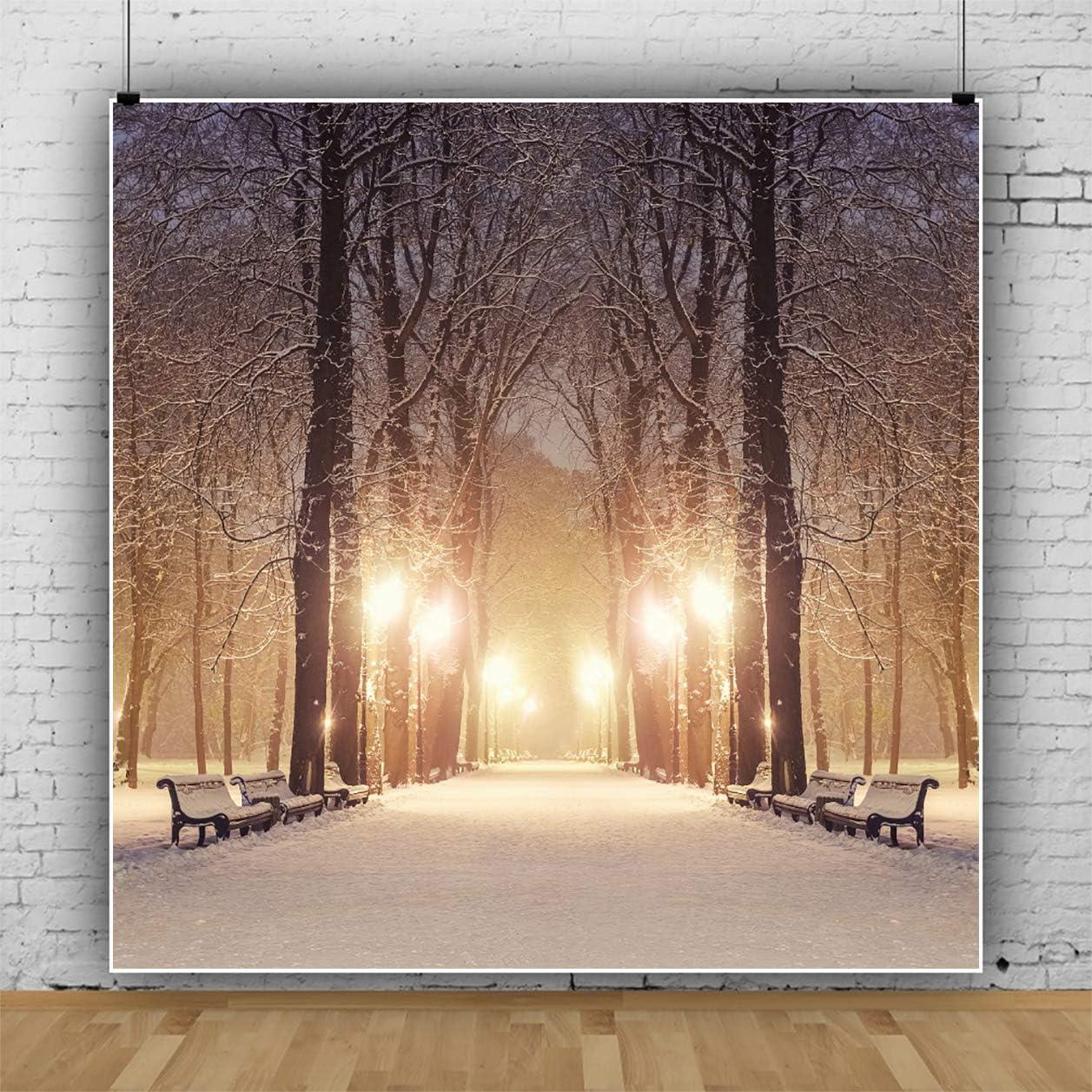 Yeele Winter Night Park Backdrop Snowy Bench Street Lamps Photography Background Kids Newborn Adults Artistic Portrait 10x10ft Work Event Wedding Photoshoot Banner Photo Booth Studio Video Wallpaper