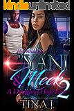 C'Yani and Meek 2: A Dangerous Hood Love