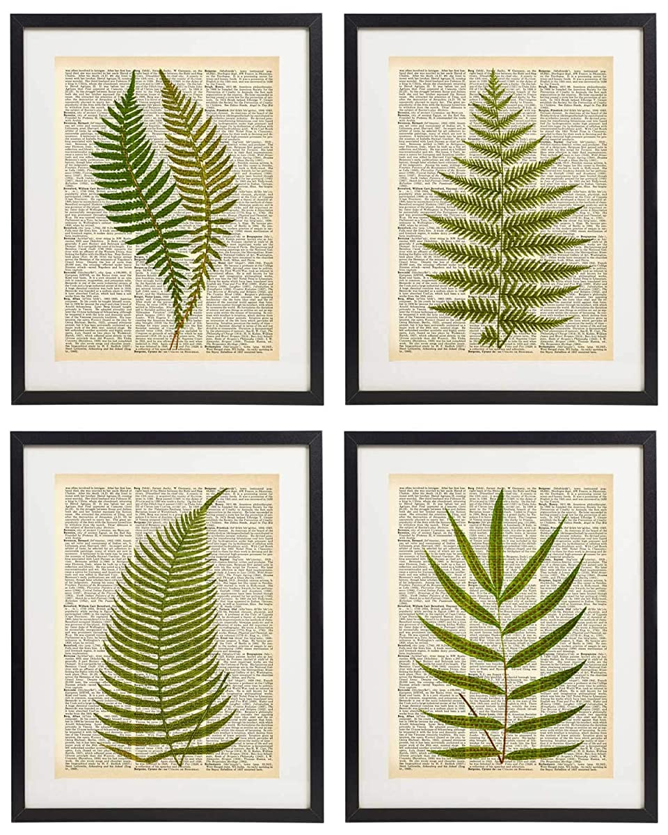 IDIOPIX Fern Art Prints Vintage Botanical Wall Art Set of 4 Prints UNFRAMED 08