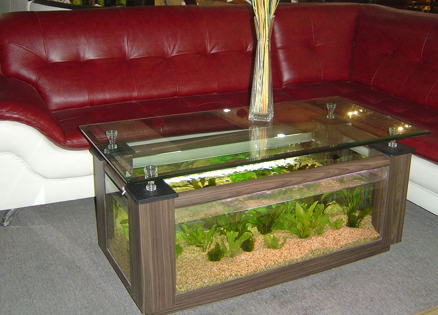 Amazon 48gl rectangular coffee table aquarium with pump amazon 48gl rectangular coffee table aquarium with pump light filter and completely fish ready kitchen dining geotapseo Image collections
