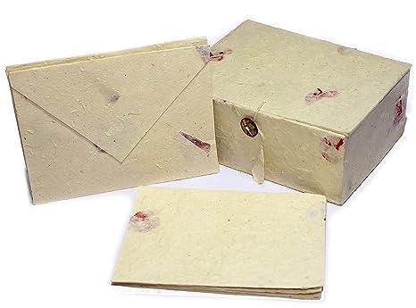 Amazon.com: Juego de tarjetas de felicitación y sobres de ...