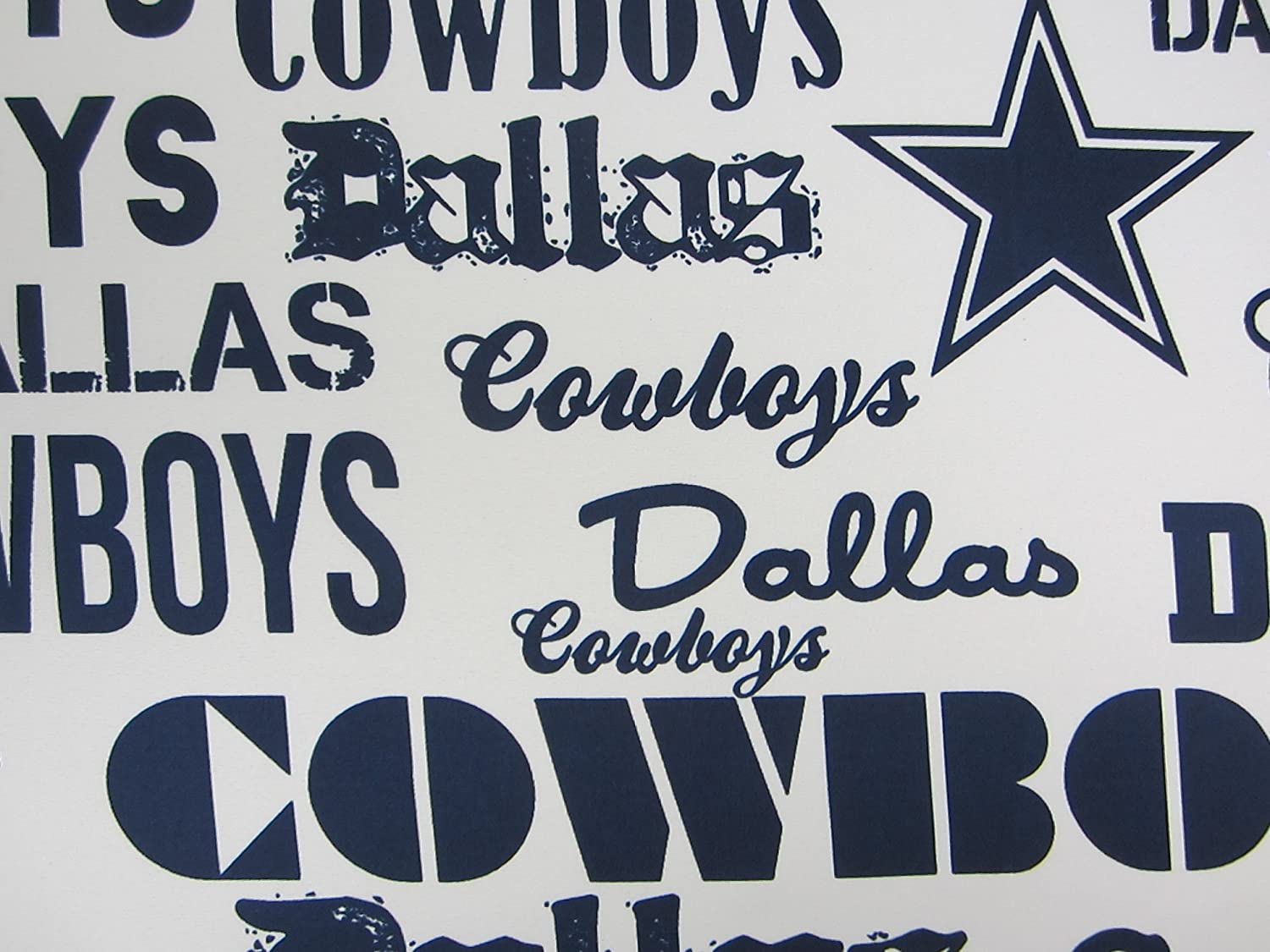 Dallas Cowboys 100% Polyester (FLAT SHEET ONLY) Size TWIN Boys Girls Kids Bedding NW Company