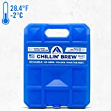 Long Lasting Ice Pack for Coolers, Camping, Fishing and More, Large Reusable Ice Pack, Chillin' Brew Series by Arctic…