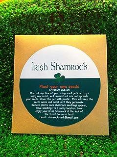 Portal Cool Paquete de semillas: Semillas de regalos irlandeses del trébol de paquetes crecer su propio Lucky Clover. Regalo de Navidad poco