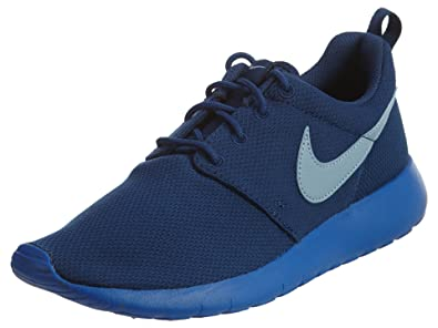 f5fc78f1f877 Nike Youth Roshe One (Coastal Blue Blue Grey Hyper Cobalt)(4 ...