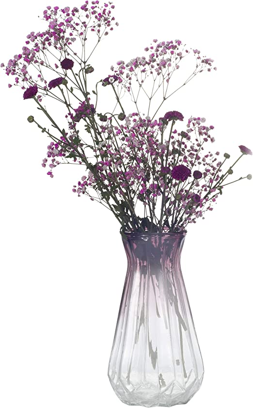 Amazon Com Ekirlin Glass Flower Vases Table Flowers Pots For