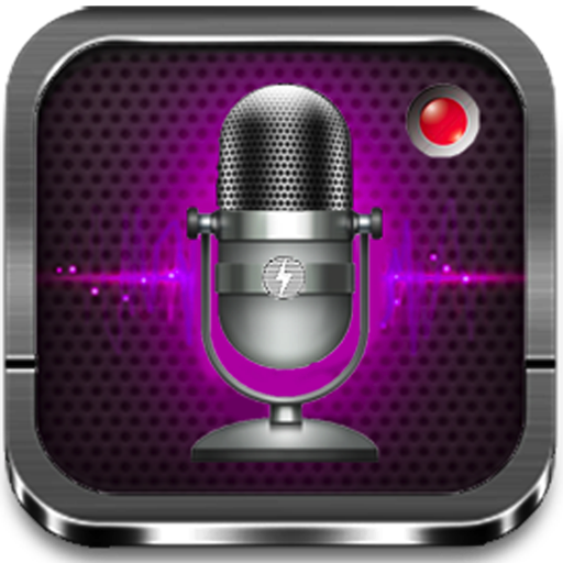 Wav Audio (Voice Recorder Pro -- Records to ANY File Format)