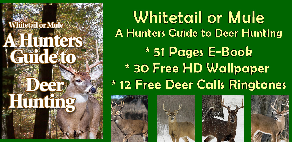 Amazon Com Whitetail Or Mule A Hunters Guide To Deer Hunting
