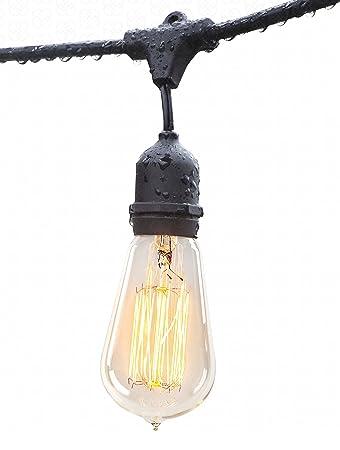 Deneve Outdoor String Lights (48ft) With Edison Bulbs   Heavy Duty Garden  Hanging Market