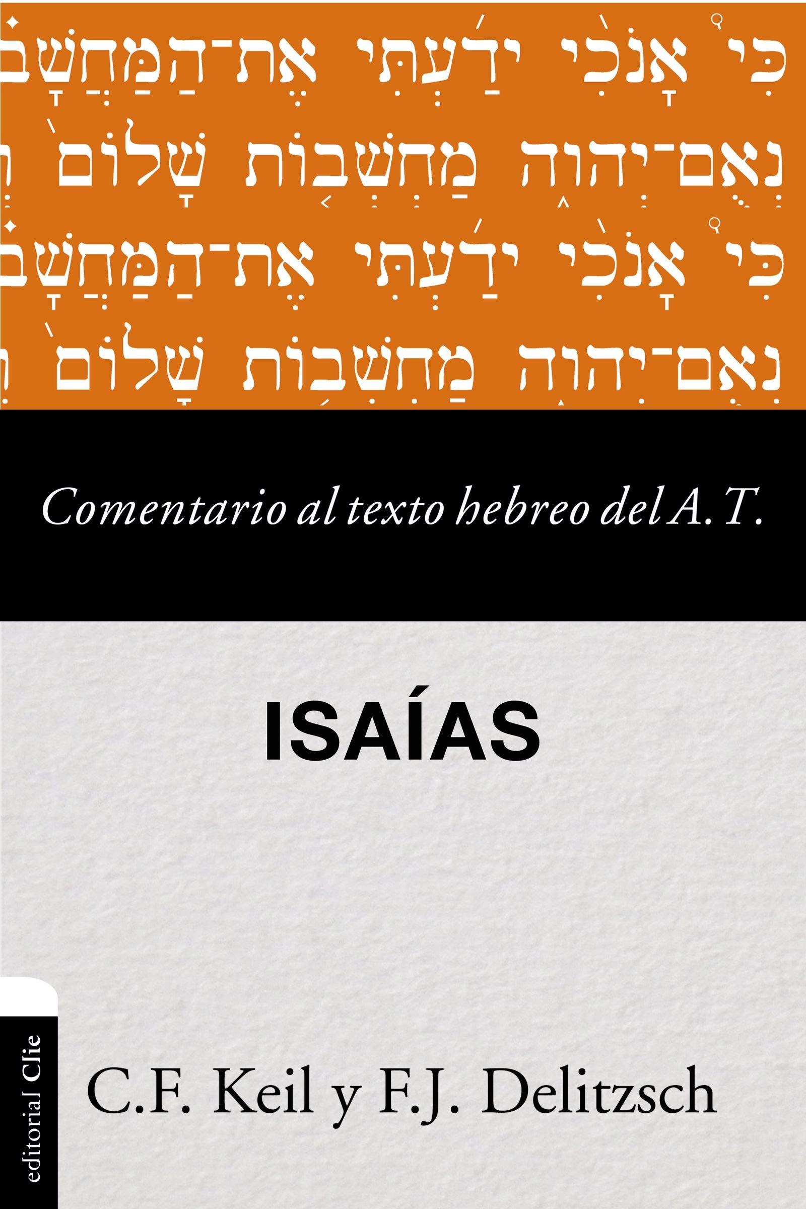 Comentario al texto hebreo del Antiguo Testamento - Isaías: Amazon.es:  Franz Julius Delitzsch: Libros